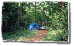 horse camping and tent camping in this nature retreat wilderness getaway