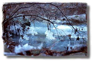Beautiful River Retreat - Icy Stream